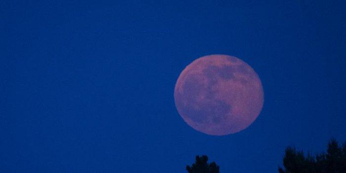 Phénomène De Lune Rose Cest Quoi Au Juste